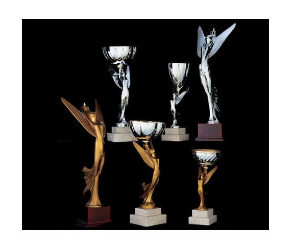 trophées victoires résine victory trophies